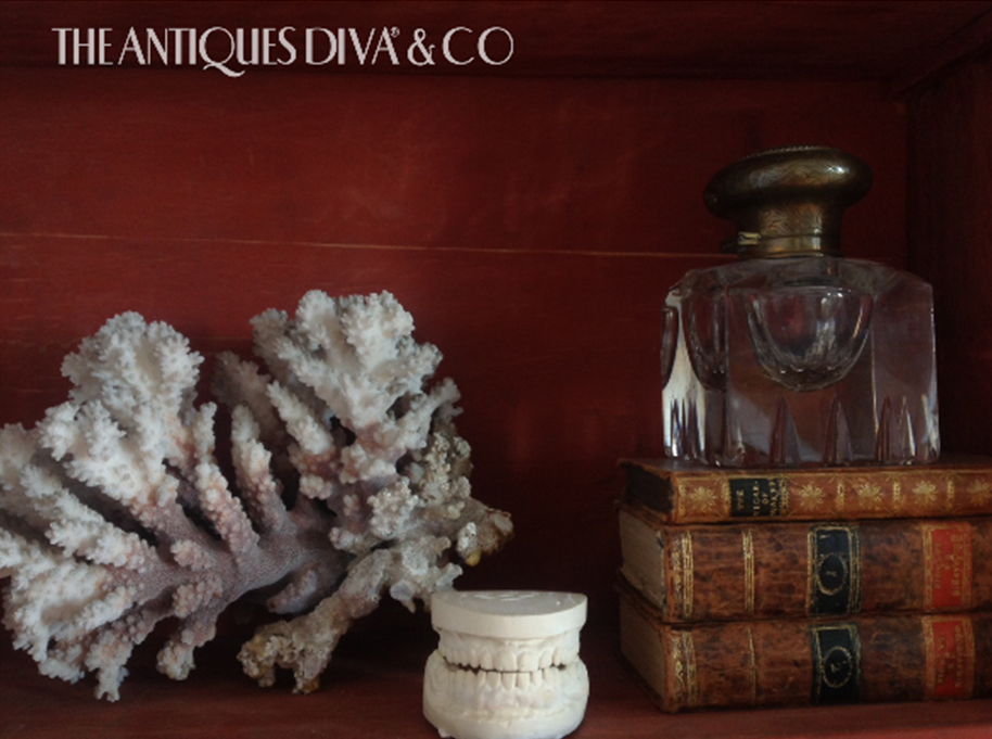 Swedish Rococo secretaire, Shelfie, antique coral, taxidermied doves, apothecary jars, silver cache pots, vintage ink wells