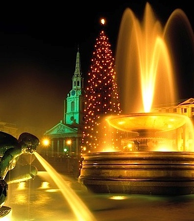 Christmas Trees, Murano Christmas Tree, Christmas in Venice, Trafalgar Square Christmas Tree, London Christmas, Frankfurt Christmas Market, St Peter's Square Christmas Tree, Galleries Lafayette Paris Christmas Tree, Monte Ingino, Capitol Christmas Tree in Washington, Antiques Diva Tours