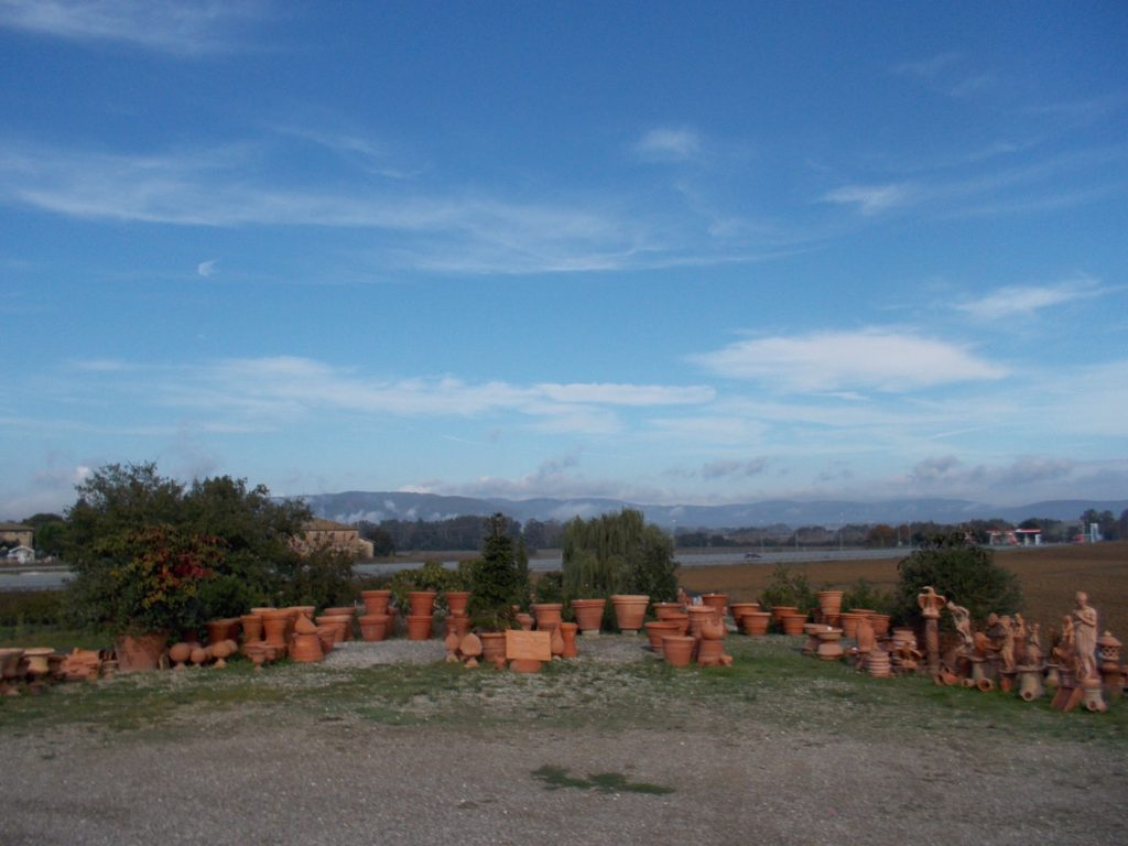 Sourcing Tuscan Pots From Estates, Italy  house clearing pot sale