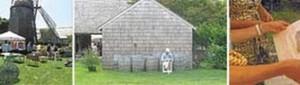Nest by Tamara, Tamara Matthews-Stephenson, Antiquing in The Hamptons, The Antiques Diva, East Hampton Antique Show, Mulford Farm, Gabby Stephenson, Majolica