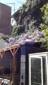 Spring at Paris Flea Market