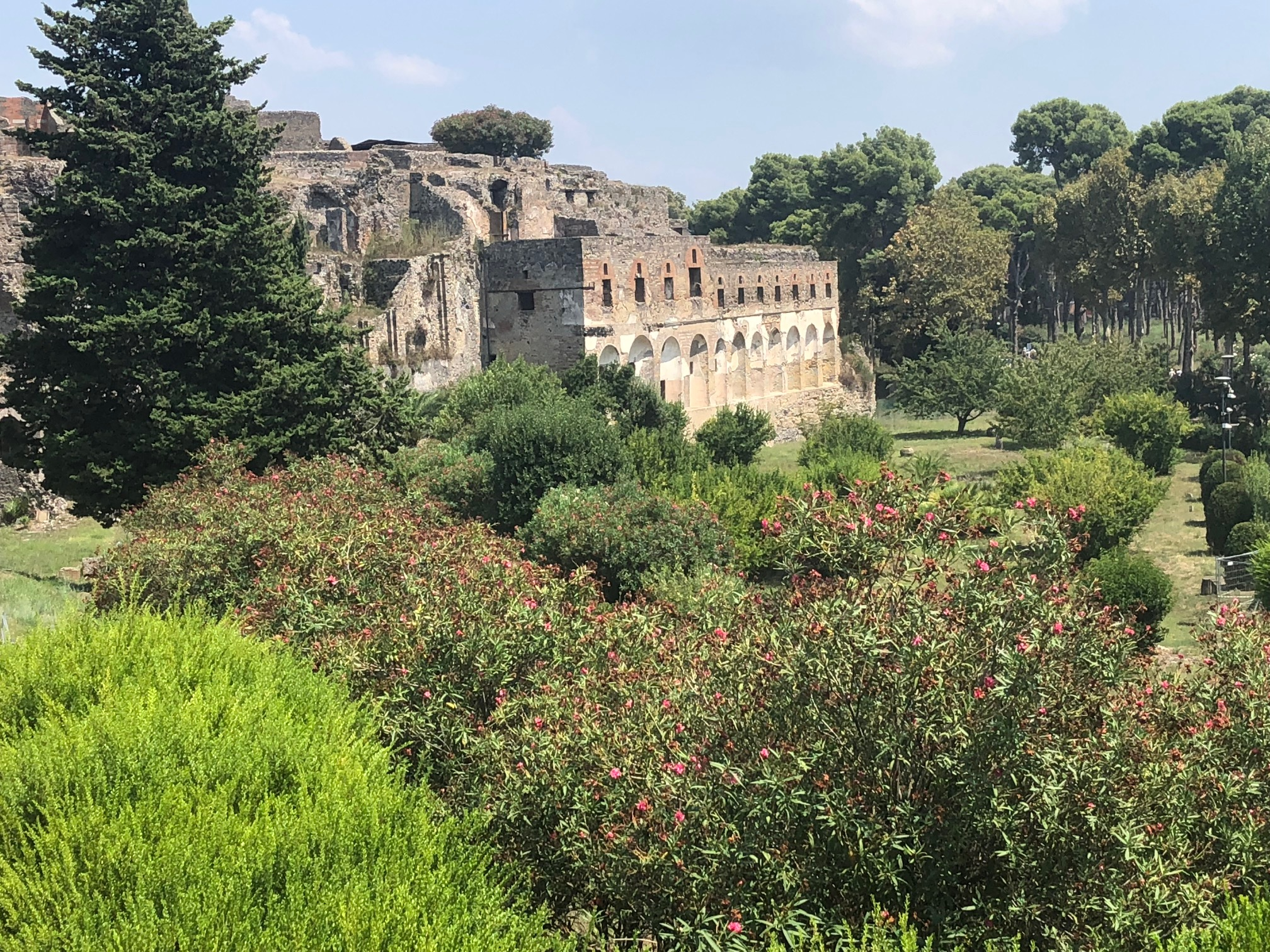 Pompeii: Be Inspired | Toma Clark Haines | The Antiques Diva & Co